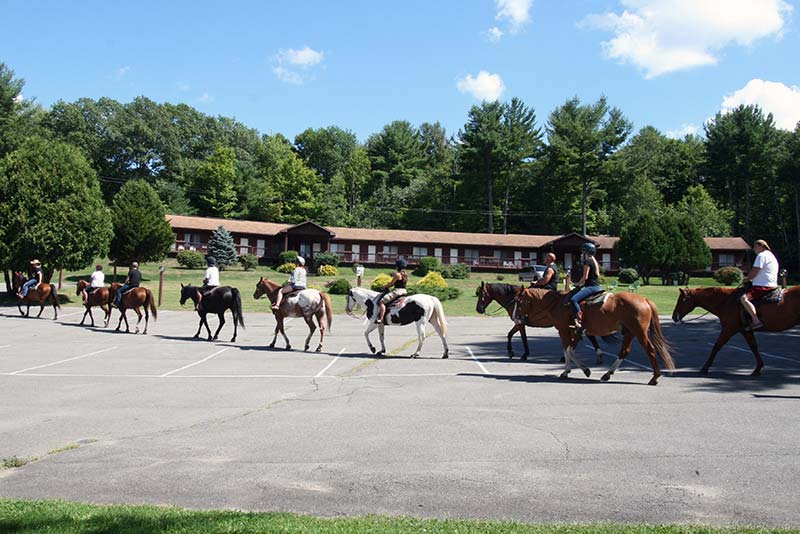 Guests riding horses through the parking lot