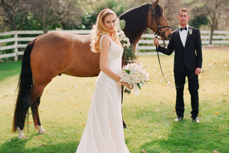 Bride and Groom pose with Horse